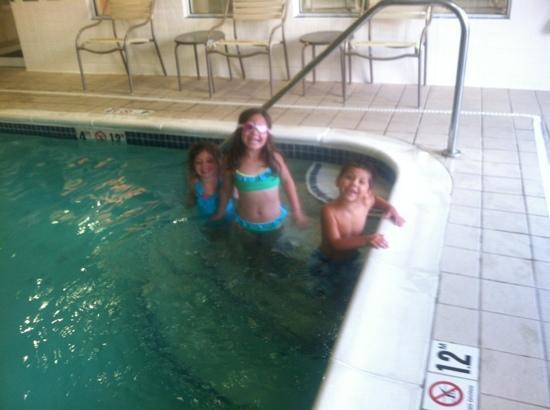 Fairfield Inn & Suites Toledo North : indoor pool