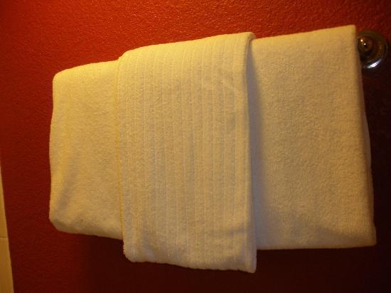 Courtyard Daytona Beach Speedway/Airport: Towels