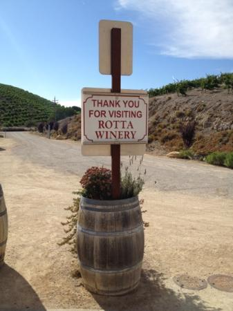 Rotta Winery: muy bien!