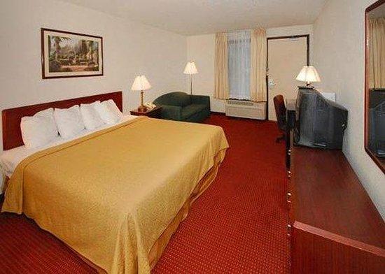 Quality Inn Greenville: King room