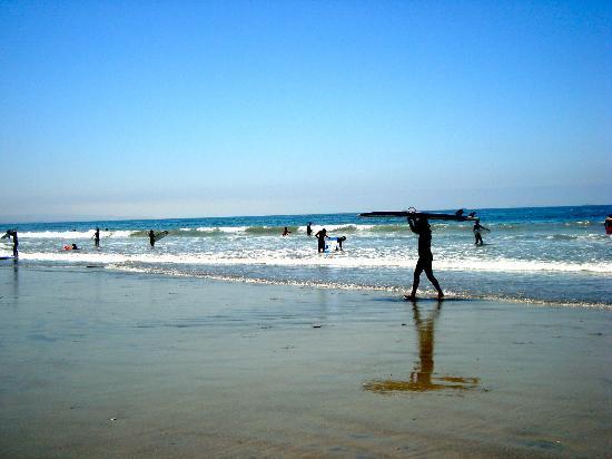 Coronado Island: surfers on Coronado beach
