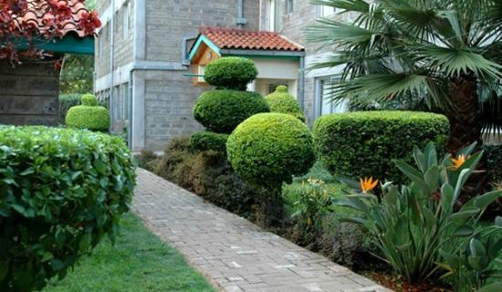 Sportsview Hotel: Gardens outside rooms