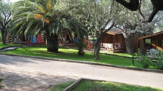 Villaggio La Siesta : Viale centrale