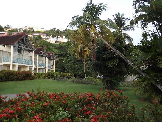 Hotel-Club Trois Ilets: Jardin