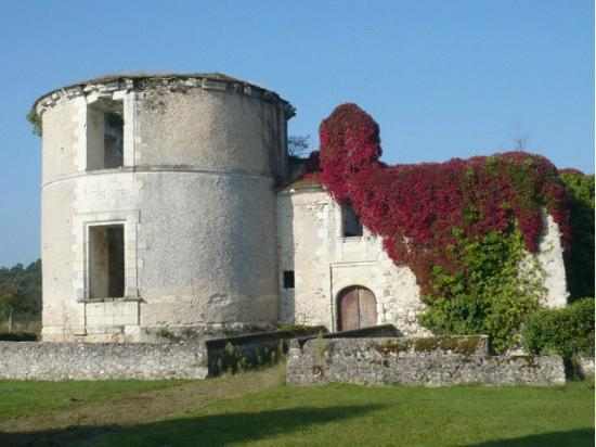 Le Vieux Chateau d'Hommes: An old ruin in the ground