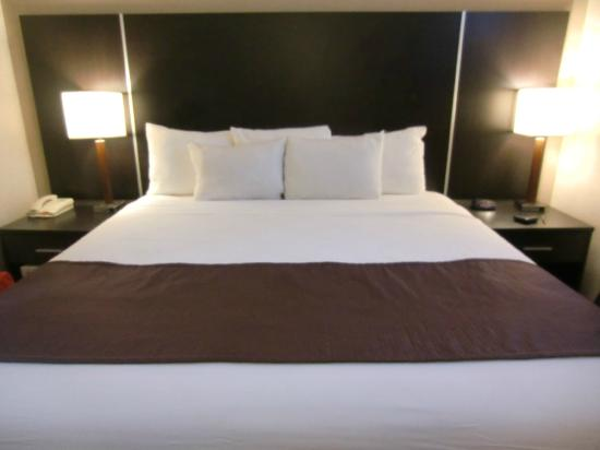 Days Inn Jamaica - JFK Airport: king size bed