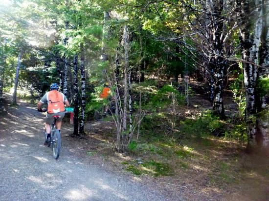 Hanmer Forest: And the fun continues on the mtb trails at Hanmer.