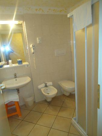 Hotel Venezia Park: Piccola panoramica del bagno