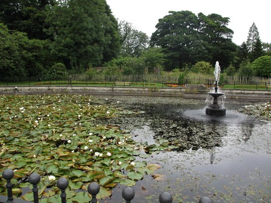 Wigan, UK: The restored lilly pond in the country park