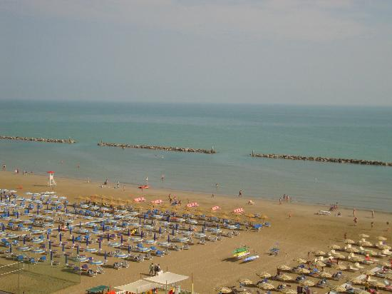 Hotel international senigallia italy reviews photos price comparison tripadvisor - Hotel international senigallia ...