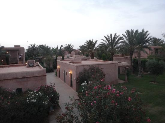 Club Med Marrakech La Palmeraie: View from our room