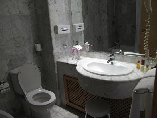 Sheraton Tunis Hotel: bus room