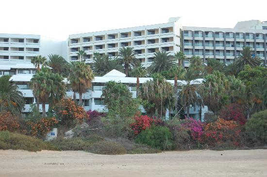 anuncios acompañante del hotel paseo cerca de Santa Cruz de Tenerife