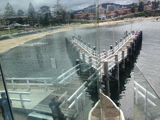 Harbourfront Seafood Restaurant: View of Belmore Basin from Harbour Front Restaurant
