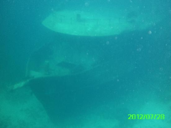 Stuart Cove's Dive Bahamas: Boat wreck