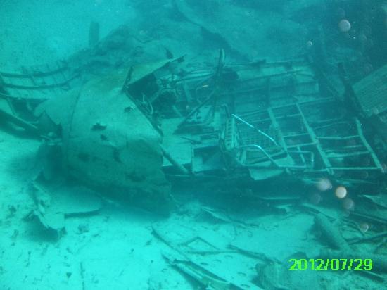 Stuart Cove's Dive Bahamas: Airplane Wreck