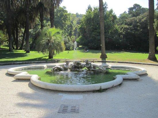 Orto Botanico di Roma: Gartenanlage