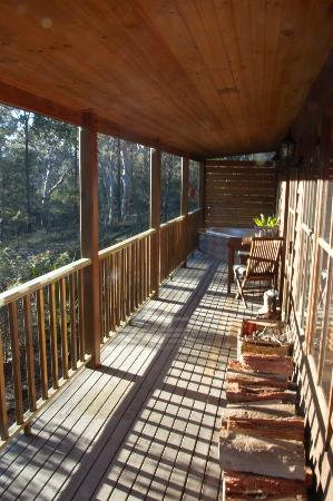 Bingle Tree Retreat: Veranda