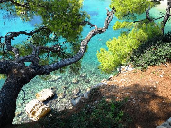 National Marine Park of Alonissos and Northern Sporades: Skiatos