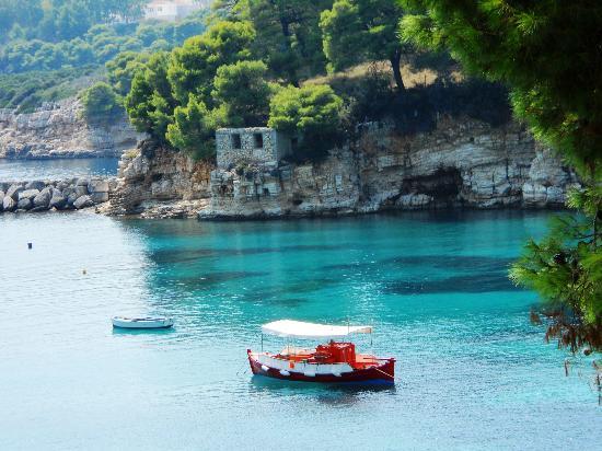 National Marine Park of Alonissos and Northern Sporades: Alonissos - Votsi