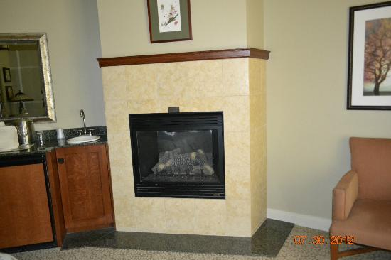 Avila Village Inn: fireplace in room 109