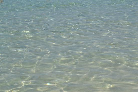 La Pelosa Beach: La meravigliosa acqua della Pelosa