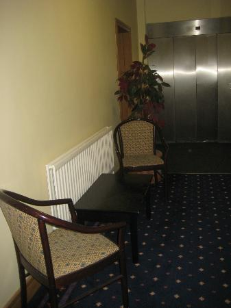 Elstead Hotel: Why the plastic plant; why anything there?