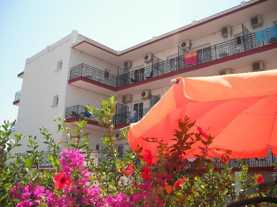 هوتل كارمن تيريزا: The hotel from the pool 