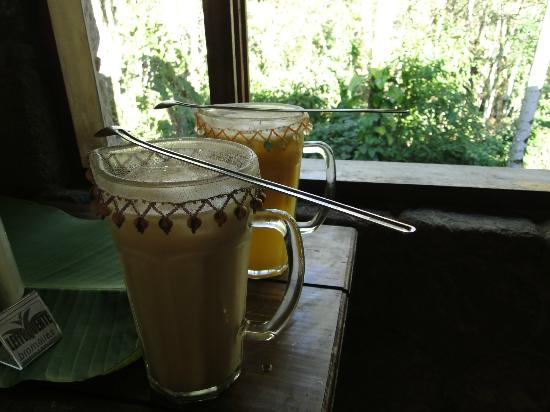 Pousada Bromelias: Desayuno