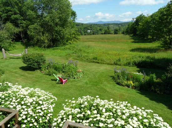 Clifford Country Bed & Breakfast: View from guestroom windows