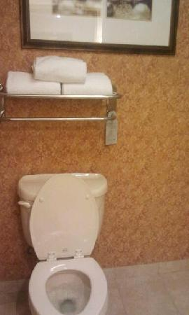 Homewood Suites by Hilton East Rutherford-Meadowlands: Loo