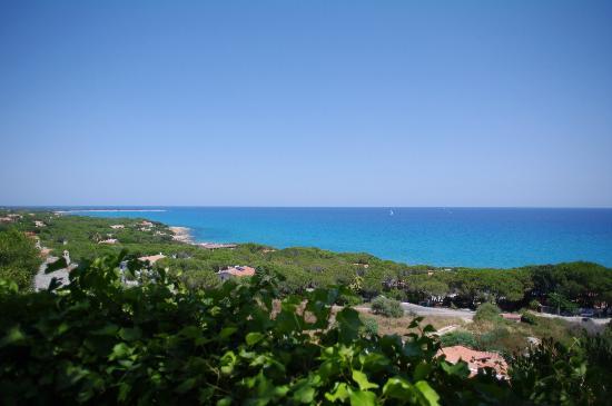 Villaggio Alba Dorata: Vista dagli appartamenti 101 al 106
