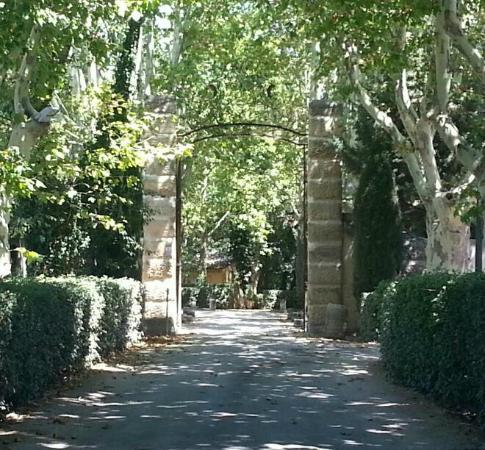Chateau de la Pioline: The driveway / entrance...