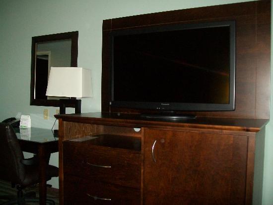 Holiday Inn Hotel & Suites, Williamsburg-Historic Gateway: Nice TV