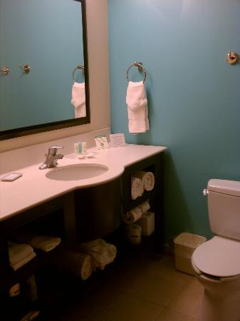 Comfort Suites Lake City: Great bathroom - loved the colors!!