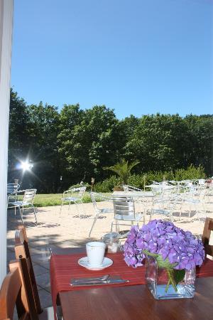 Latitude Ouest Hotel & Restaurant: Le parc