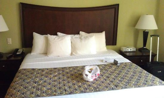 SpringHill Suites Baltimore Downtown/Inner Harbor: bed