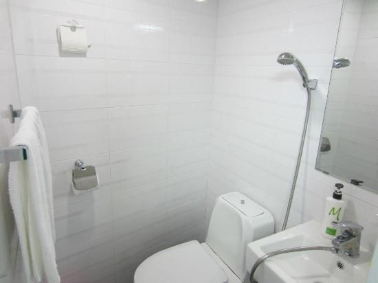 Go Korea Guesthouse: Bathroom (showers are often attached to the sink in Korea)