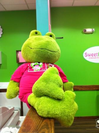 Sweet Frog Premium Frozen Yogurt : cute frog near entrance