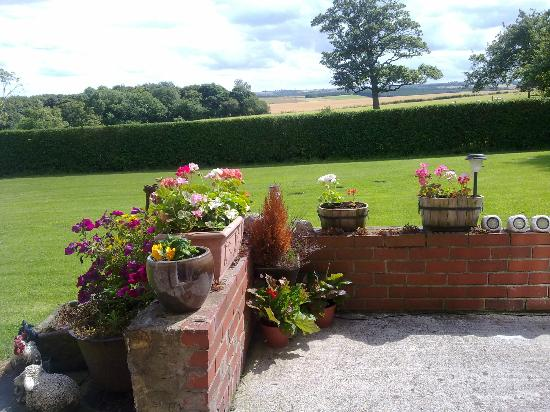 Nafferton Farm Bed & Breakfast: The Garden
