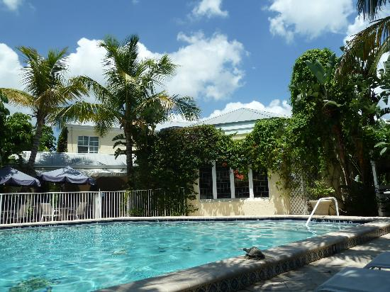 The Caribbean Court Boutique Hotel: pool at noon