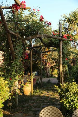 Relais Villa Caprile: courtyard