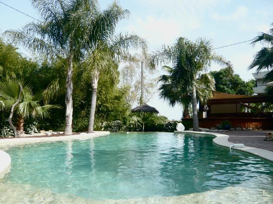 Cannes Villa St Barth: piscine