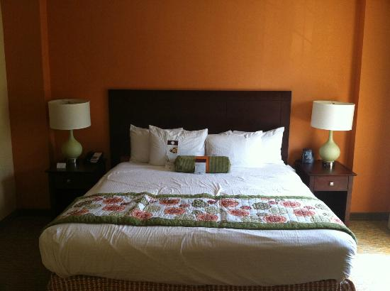 DoubleTree Suites by Hilton Hotel Atlanta - Galleria: King Bed