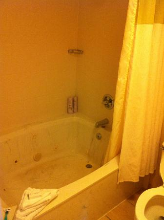 DoubleTree Suites by Hilton Hotel Atlanta - Galleria: Shower in Jetted Tub