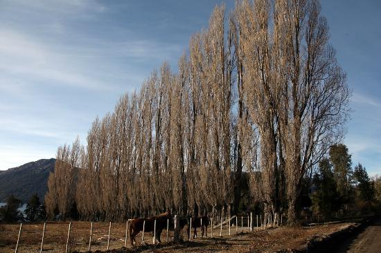 Tillka - Casas de Montana: foto 04