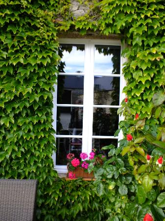 Les Chaufourniers: Vine-covered wall