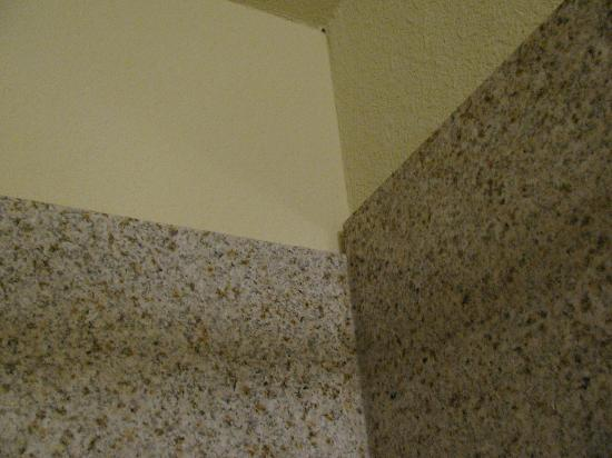 Comfort Inn & Suites: Shoddy work on tub walls