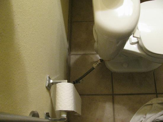 Comfort Inn & Suites: Toilet far from wall with TP an awkward reach-back.
