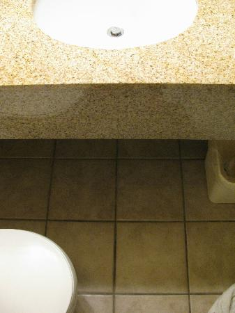 Comfort Inn & Suites : Toilet in front of vanity sink